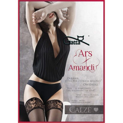 Gatta Ars Amandi Calze 01 - Samodržící punčochy s Kamasutra krajkou Nero Černá